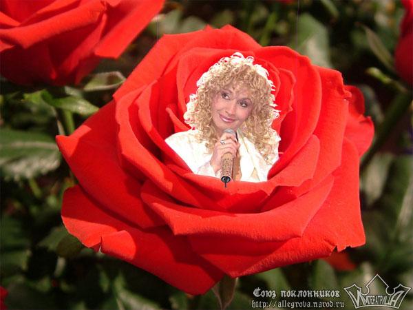 Поздравления с днем рождения ирина аллегрова на ютубе